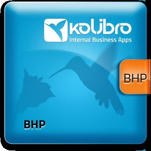 system_BHP