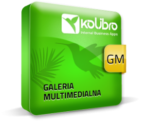 a1_galeria_multimedialna